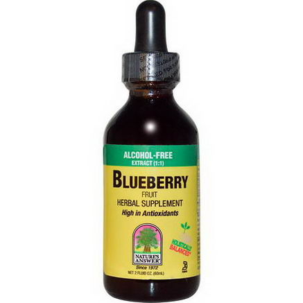 Nature's Answer, Blueberry Fruit, Alcohol-Free Extract, 2 fl oz (60 ml)