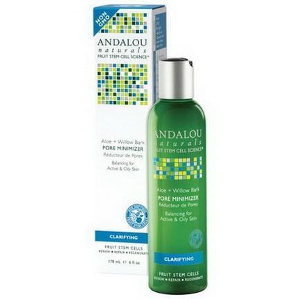 Andalou Naturals, Pore Minimizer, Aloe Willow Bark 178ml