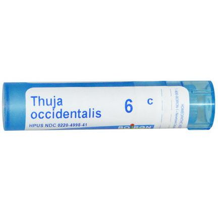 Boiron, Single Remedies, Thuja Occidentalis, 6C, 80 Pellets
