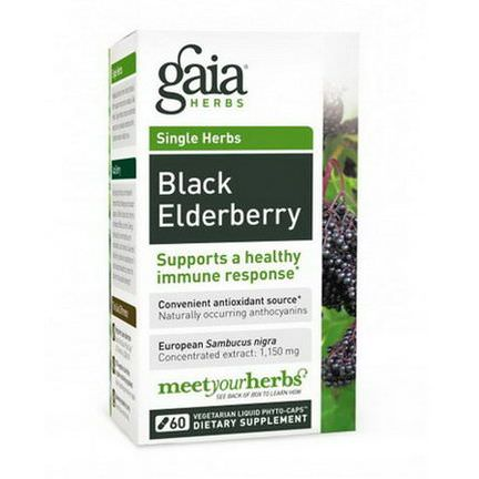 Gaia Herbs, Black Elderberry, 30 Vegetarian Liquid Phyto-Caps
