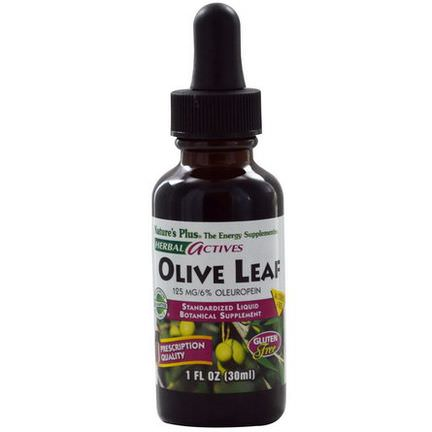 Nature's Plus, Herbal Actives, Olive Leaf, Alcohol Free 30ml