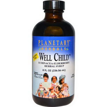 Planetary Herbals, Well Child, Echinacea-Elderberry Herbal Syrup, Alcohol Free 236.56ml