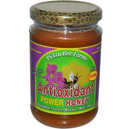 Y.S. Eco Bee Farms, Antioxidant Power Honey 383g