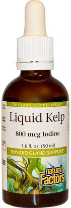 Salud, Tiroides, Suplementos, Algas Diversas, Algas Marinas Natural Factors, Liquid Kelp, 800 mcg Iodine, 1.6 fl oz (50 ml)