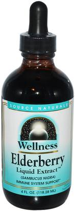 Salud, Gripe Fría Y Viral, Saúco (Sambucus), Productos De Fórmula De Bienestar Source Naturals, Wellness, Elderberry Liquid Extract, 4 fl oz (118.28 ml)